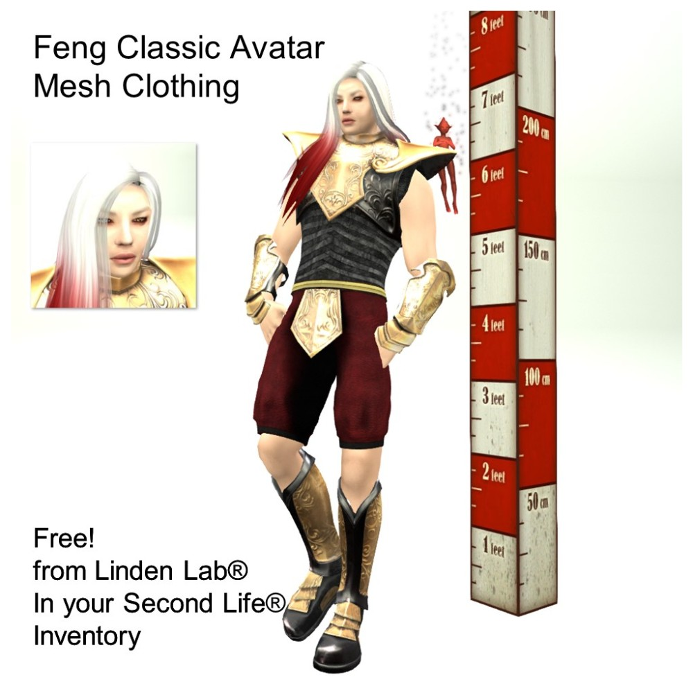 LL Avatar - Male - Feng