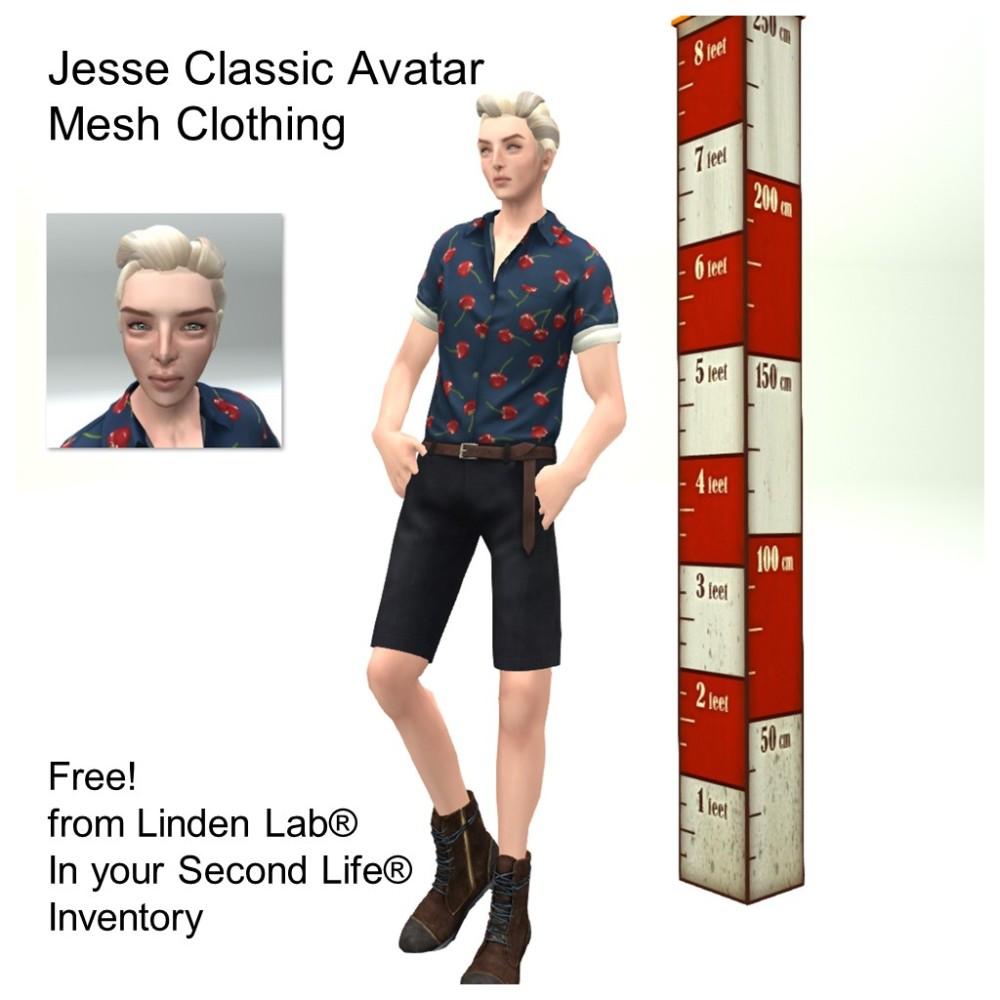 LL Avatar - Male - Jesse