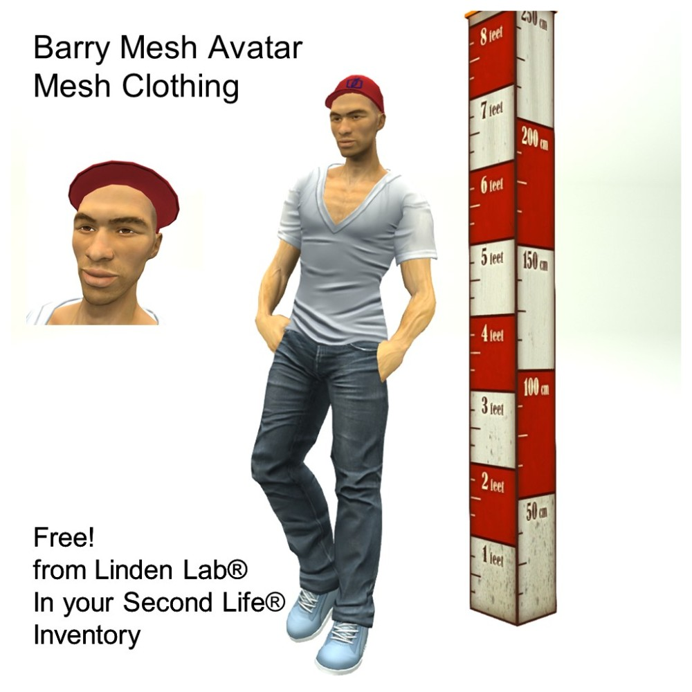 LL Avatar - Male Mesh - Barry