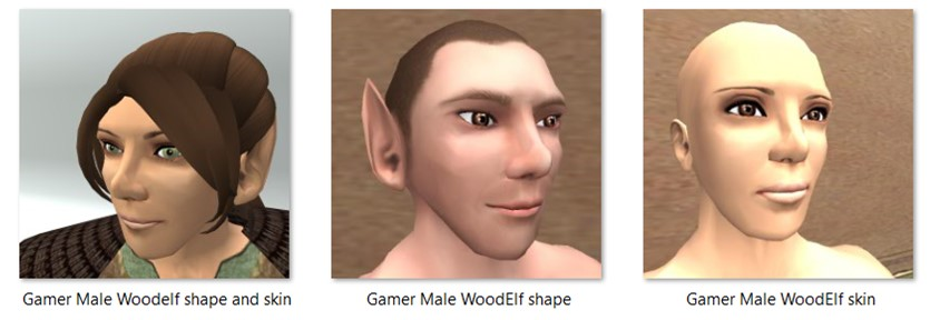 LL Faces - Male - Gamer Male Woodelf
