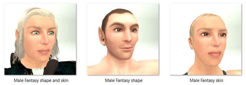 LL Faces - Male - Male Fantasy